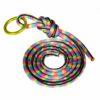 highline leash set